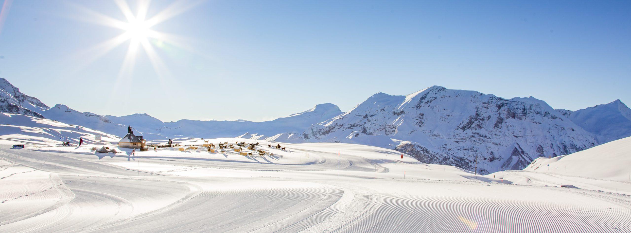 Village Williwaw Alpi Traineau Orcieres Merlette 1850 Champsaur Hautes Alpes Alpi Traineau Chiens de traineaux